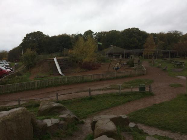 Worcester_woods (3)
